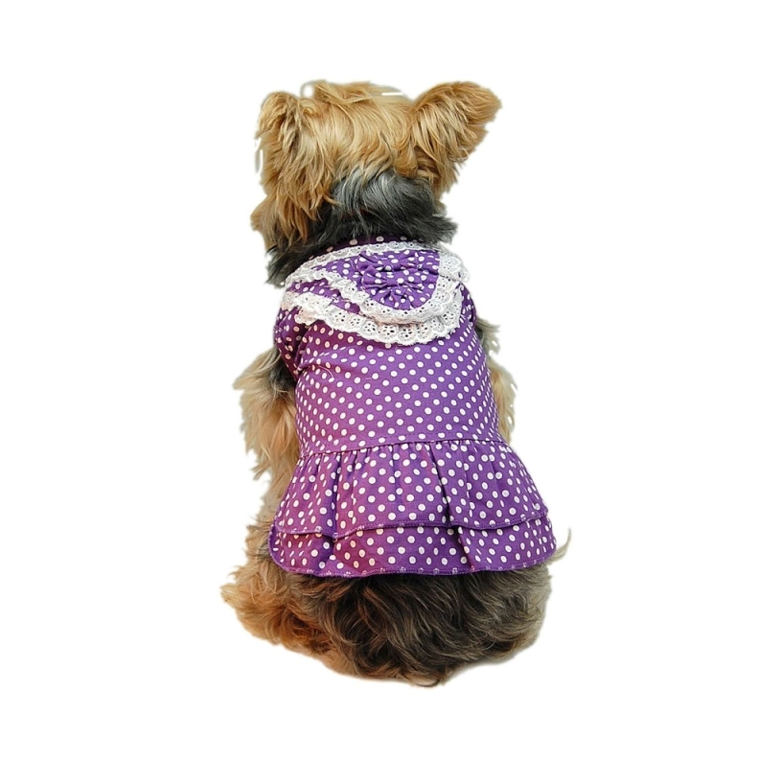 Purple White Dot Lace Dual Layer Dress For Dog Clothing Clothes - Extra Small (Gift for Pet)