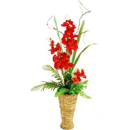 - 47 in. Phalaenopsis Orchid Garden with Phoenix Palms, Empress leafs & Air Roots in a Tapered Basket