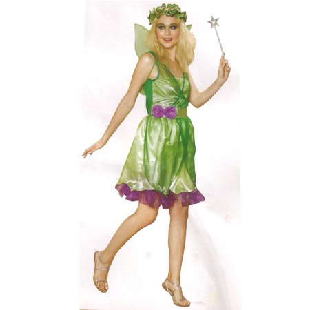 Homemade Fairy Halloween Costumes Adults (Northlight Fairy Women's Adult Halloween Costume -)