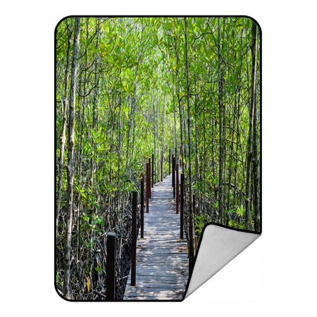 PHFZK Tropical Nature Blanket, Walkway with Wooden Bridge through Mangrove Forest Fleece Blanket Crystal Velvet Front and Lambswool Sherpa Fleece Back Throw Blanket 58x80inches