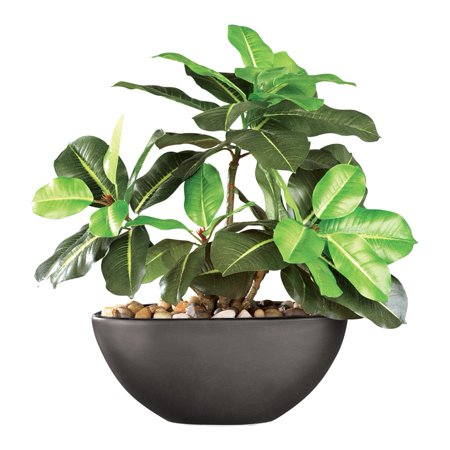 Rubber Tree Maintenance-free Artificial House Plant With Ceramic Pot, Black](Planet Decor)