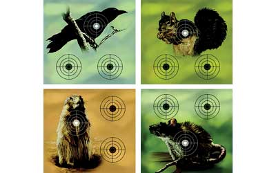 "Click here to buy Crosman Varmint 9.75"" x 9.0"" Shooting Targets, 20 count by Crosman Corporation."