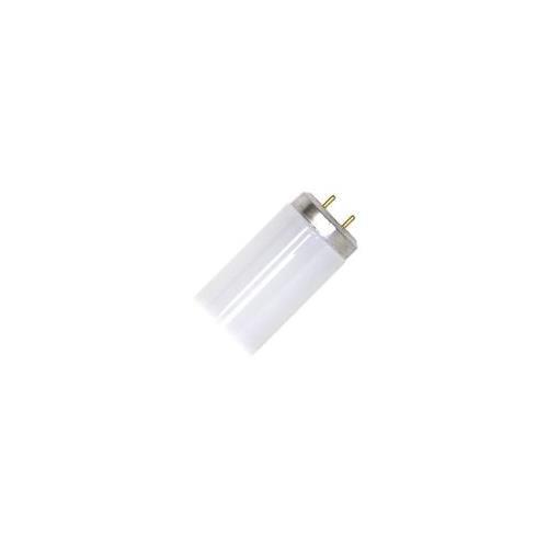 GE 25577 F20T12//WW-UPC Straight T12 Fluorescent Tube Light Bulb