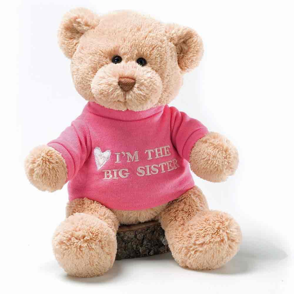 """GUND 12"""" Plush I'm a Big Sister Teddy Bear by Gund"""