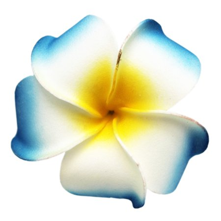 Tropical Flower Light Blue and White Hair Clip With Yellow Center (Hair Flower Clips)