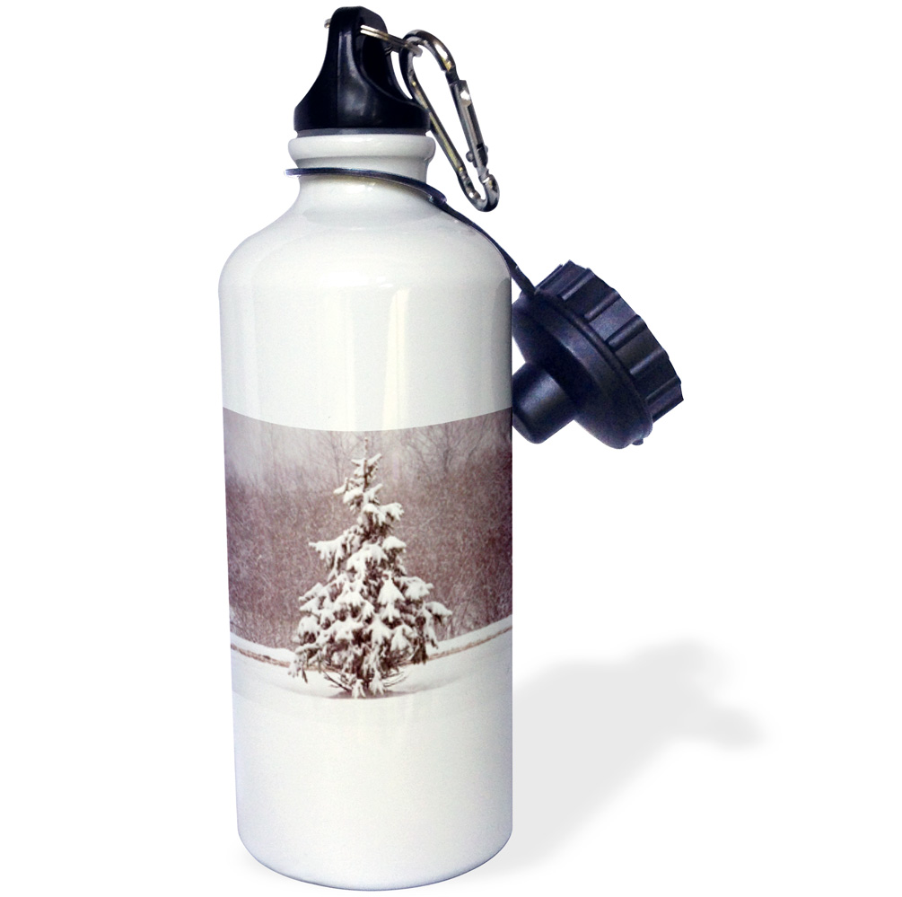 3dRose Small Winter Evergreen , Sports Water Bottle, 21oz by Supplier Generic