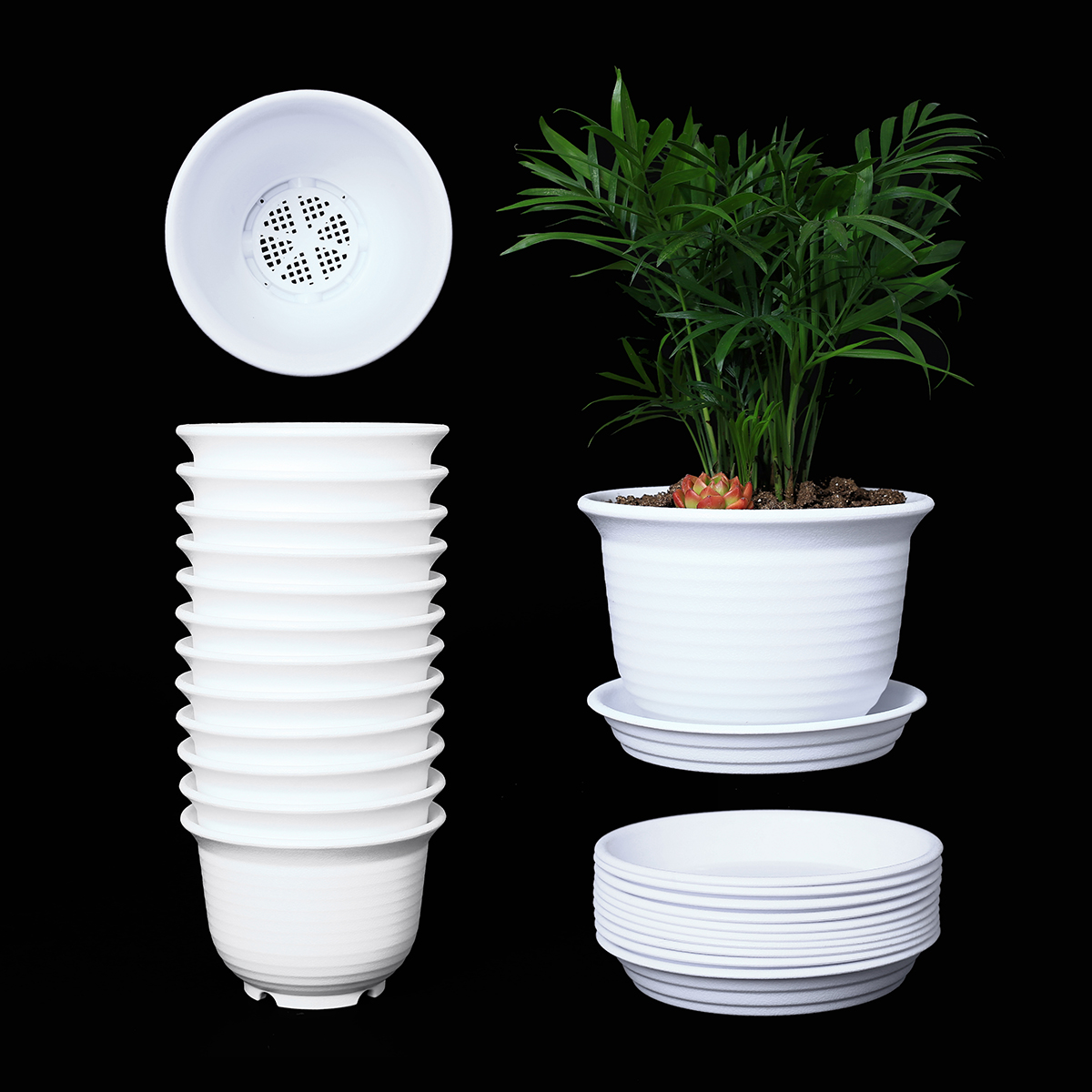225 & 10 Pack 6 Inch Plastic Round Drainage Plant Pots Containers with Saucers Trays for Indoor and Outdoor Herbs Succulents Cactus and Flowers