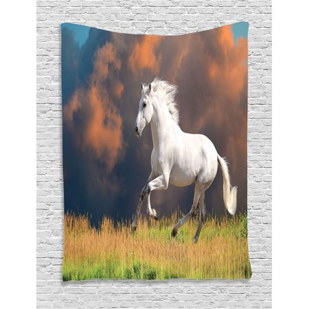 Animal Decor Wall Hanging Tapestry, Andalusian Horse With A Majestic Dust Cloud Background Strong Desires Sign Photo, Bedroom Living Room Dorm Accessories, By Ambesonne