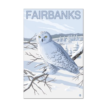 Fairbanks, Alaska - Snowy Owl - Lantern Press Artwork (8x12 Acrylic Wall Art Gallery Quality) ()