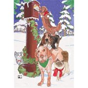 Pipsqueak Productions C443 Mix Dog With Cat Holiday Boxed Cards