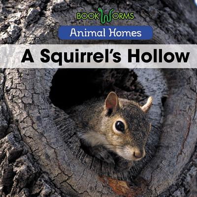 Animal Homes: A Squirrel's Hollow (Hardcover)