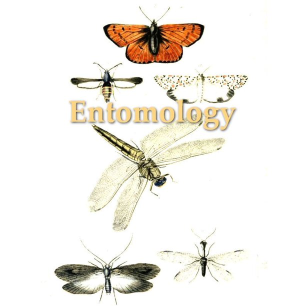 An Introduction to Entomology, Volume IV - eBook