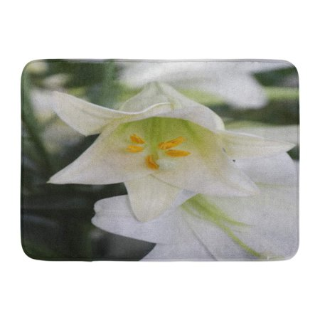GODPOK Blooming Green Beautiful Regal Lily in Bloom White Beauty Blossom Rug Doormat Bath Mat 23.6x15.7 inch
