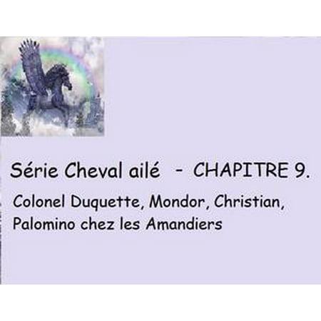 Chapitre 9 - Colonel duquette, mondor, christian, palomino chez les amandiers - - Colonel Sanders Kids