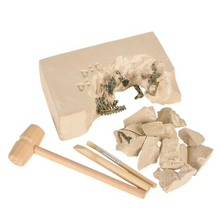 DINOSAUR DELUXE FOSSIL EXCAVATION KIT, Case of 12