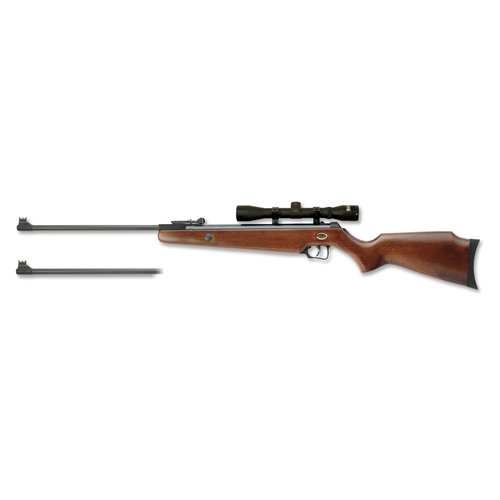 Beeman Dual Caliber Air Rifle with Scope