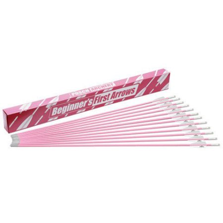 Posch Archery Beginners First 30 Fiberglass Pink Arrows  12 Pack  For Recuve   Compound Bow Youth Target Practice Archery Arrows