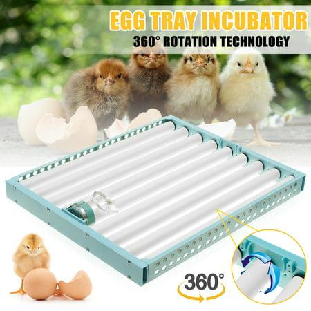 Multifuntion Plastic Egg Tray Automatic Hatch Egg Tray Incubator Turner For Chicken Duck Bird Quail Eggs 110V 360°