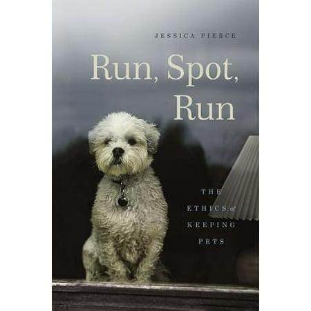 Run, Spot, Run : The Ethics of Keeping Pets - Glow Run Chicago