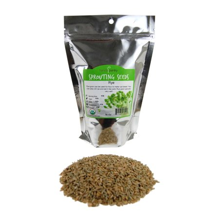 Organic Rye Grain Seeds - 1 Lb Re-Sealable Bag - Rye Seed / Grains for Flour, Bread, Sprouting, Rye Grass &