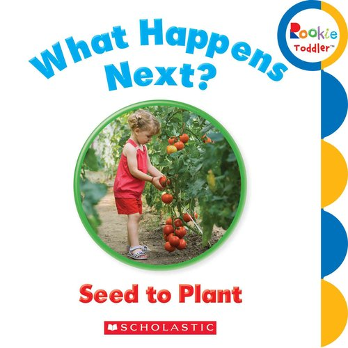 What Happens Next? Seed to Plant