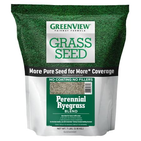GreenView Fairway Formula Grass Seed Perennial Ryegrass Blend - 7