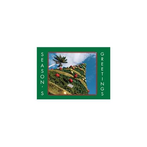 Birchcraft Studios 2133 West Coast Christmas - Gold Lined Envelope with White Lining - Hunter Ink - Pack of 25