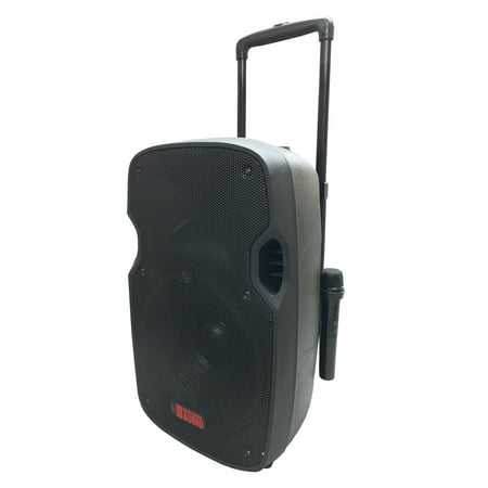 Wireless Battery Powered Pa System - Battery Powered Portable PA System with 2 Wireless Microphones - 12