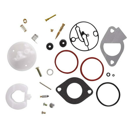 Carburetor Rebuild Kit for Briggs & Stratton Master Overhaul Carbs (Briggs & Stratton 498260 Carburetor Overhaul Kit)