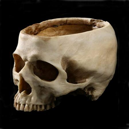 Figurine Resin Human Skull Head Flower Pot Resin Decoration Halloween Antique Appliances Ashtray Planter Bed Box Container Replica Home Bar Decor (Antique Appliances)