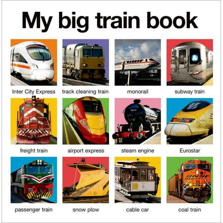 (My Big Train Book)