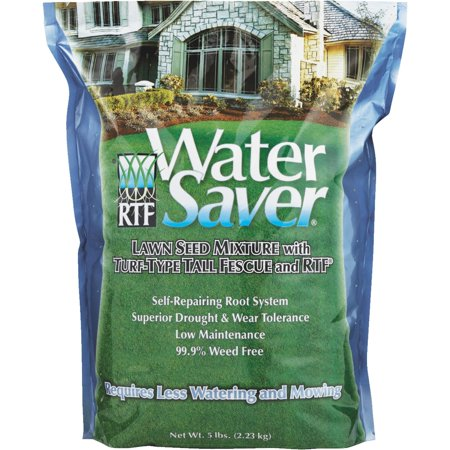 Water Saver Grass Seed
