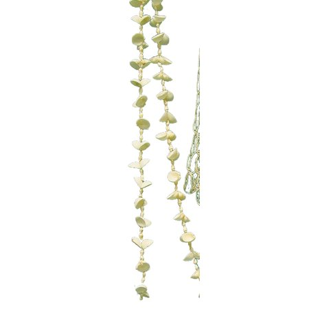 Beachcombers Clamrose and Nassa Christmas Tree Garland Natural Shells 9 Foot](Christmas Mantle Garland)