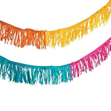 Fun Express Paper Fiesta Fringe Garland - Party Supplies, 39'](Fringe Garland)