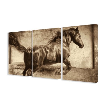 Stupell Industries Galloping Stallion Horse 3 Piece Photographic Print Canvas Set