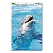 Dolphin - Porpoise MAG-NEATO'S(TM) Puzzle Magnet