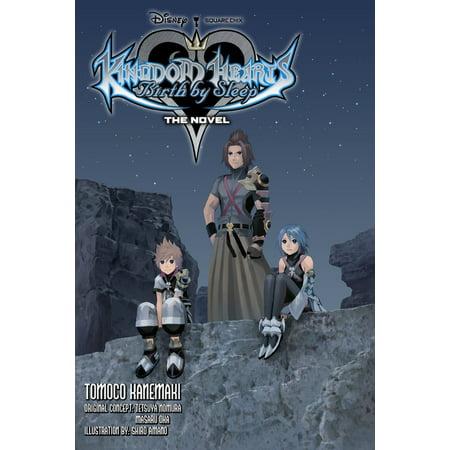 Kingdom Hearts Birth by Sleep: The Novel (light