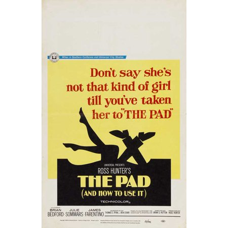 Cheap Used Costumes (The Pad and How to Use It POSTER (27x40))
