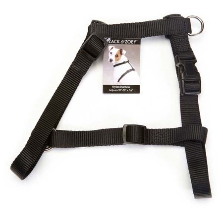 Zack & Zoey Nylon Harness 14-20in Blk