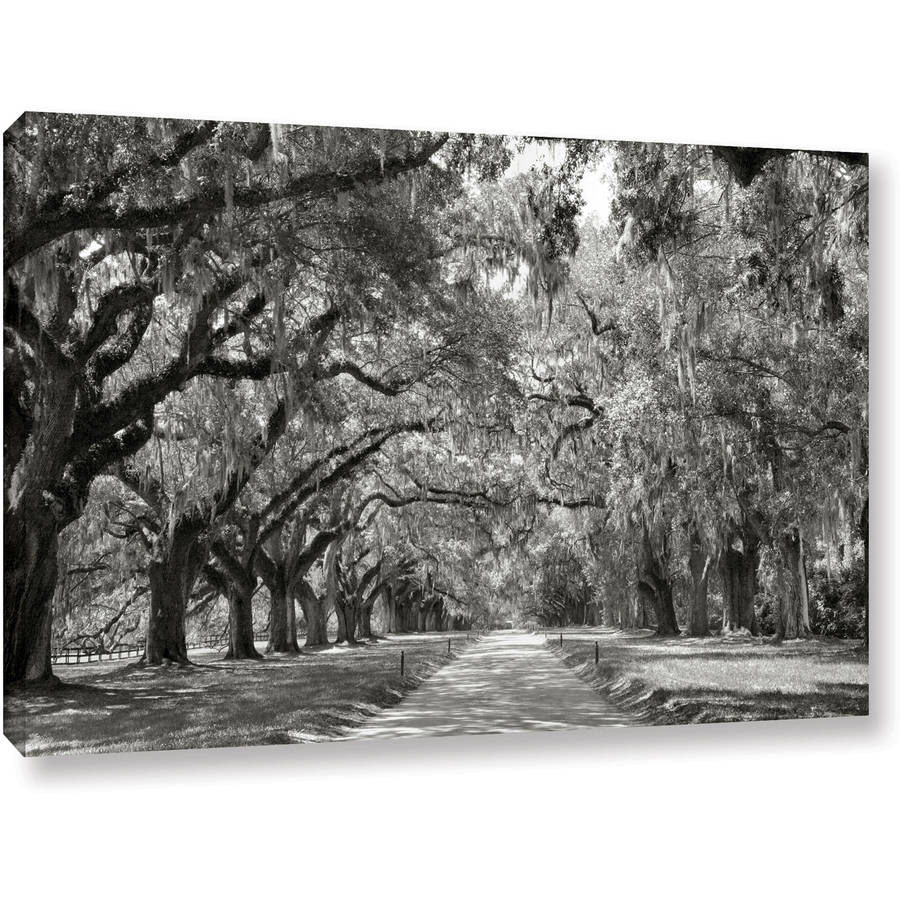 "ArtWall Steve Ainsworth ""Live Oak Avenue"" Gallery-wrapped Canvas"