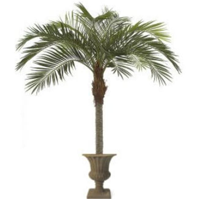 Autograph Foliages P-61560 11 ft. Coconut Palm