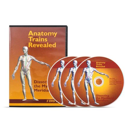 Anatomy Trains Revealed Dissecting The Myofascial Meridians 3 Dvd