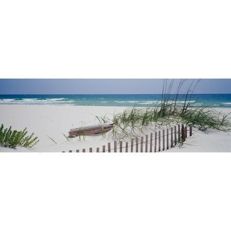 Fence on the beach Alabama Gulf of Mexico USA Poster Print