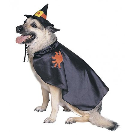 Witch Dog Pet Pet Costume - Small](Witch Costume For Dogs)