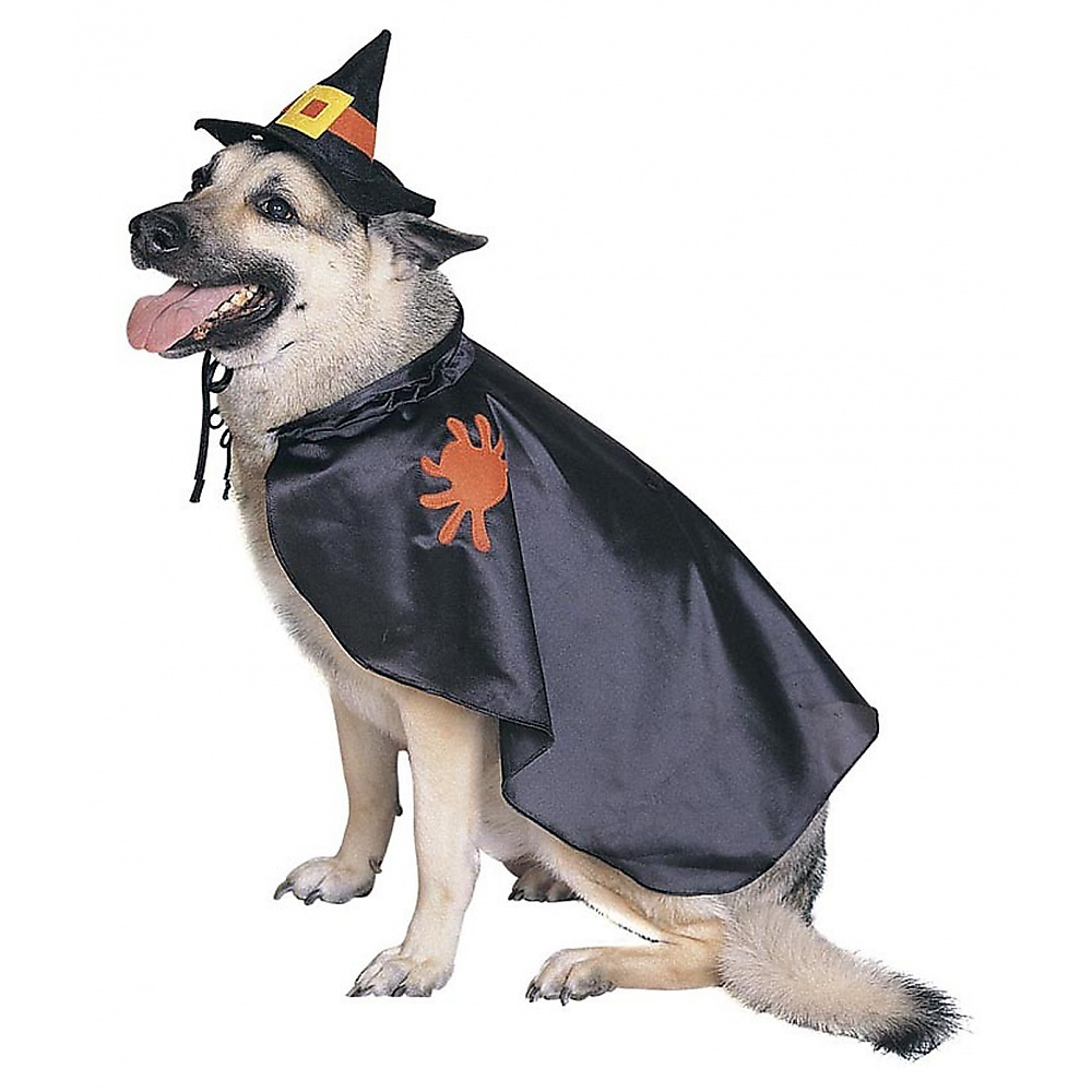 Witch Dog Pet Pet Costume - Small