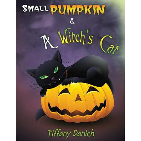 Small Pumpkin & a Witch's Cat - Small Pumpkin Decorating Ideas