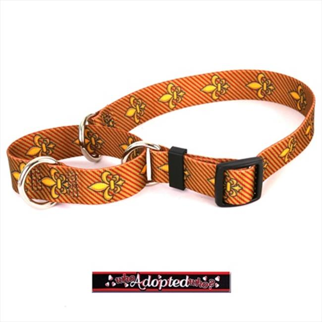 Yellow Dog Design M-WHO100XS Who Adopted Who Martingale Collar - Extra Small