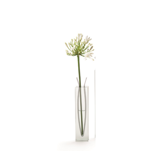 MOMA Ribbon Tall Table Vase