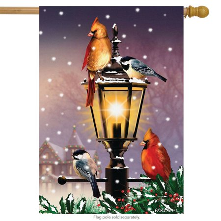 The Gathering Winter House Flag Lamp Post Cardinal Pair 28  x 40  Briarwood Lane The Gathering Winter House Flag Lamp Post Cardinal Pair 28  x 40  Briarwood Lane condition: New Brand: Briarwood LaneMPN: H00517Material: PolyesterSize: 28  x 40