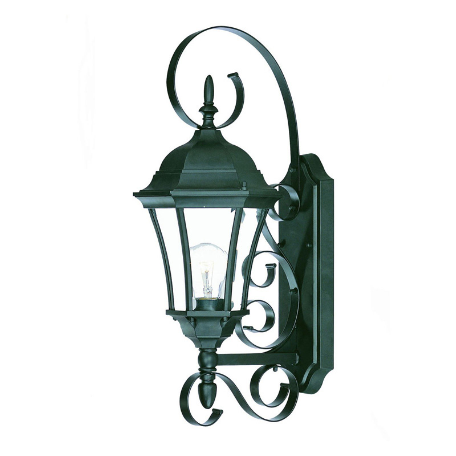 Acclaim Lighting New Orleans 1 Light Outdoor Wall Mount Light Fixture